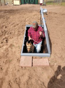 Below Ground Steel are pet friendly!
